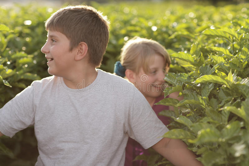 Kids Exploring In Nature Royalty Free Stock Photography