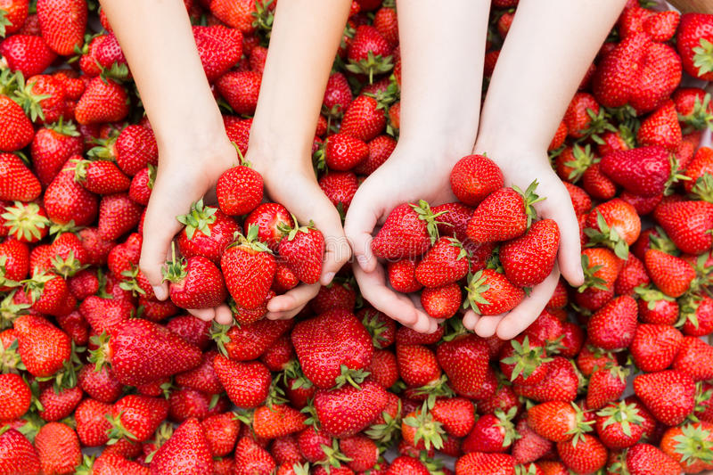 Kids hands with strawberries. royalty free stock photos