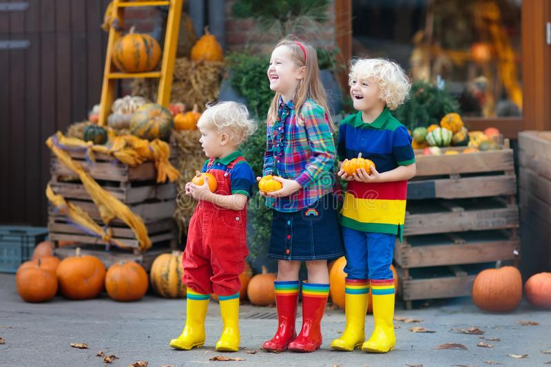 Kids having fun at pumpkin patch. Group of little children enjoying harvest festival celebration at pumpkin patch. Kids picking and carving pumpkins at country royalty free stock image