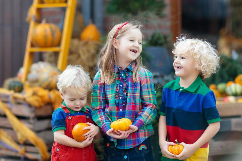 Kids having fun at pumpkin patch. Group of little children enjoying harvest festival celebration at pumpkin patch. Kids picking and carving pumpkins at country stock images