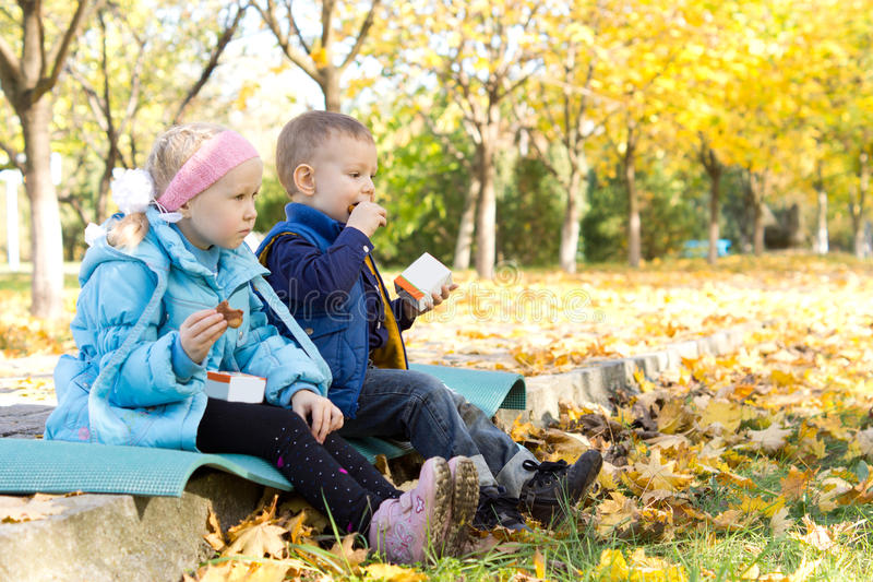 Download Kids Having A Snack In An Autumn Park Stock Photo - Image of clear, lifestyle: 27382636