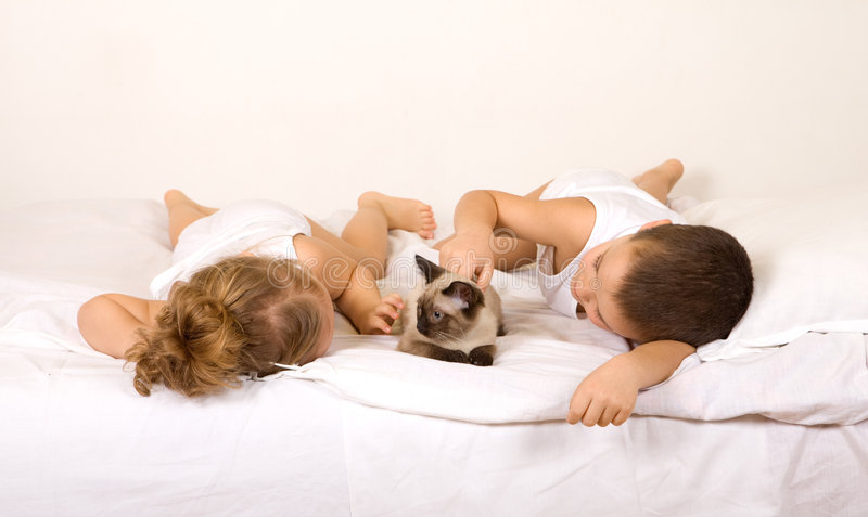 Kids laying in bed playing with a cat stock images