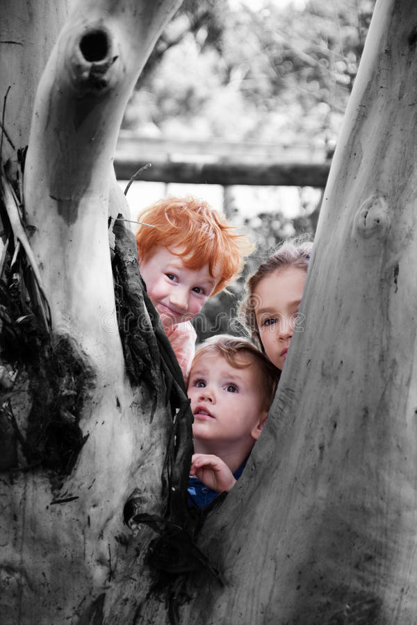 Download Kids Looking Around Tree In Nature Garden Royalty Free Stock Images - Image: 19423519