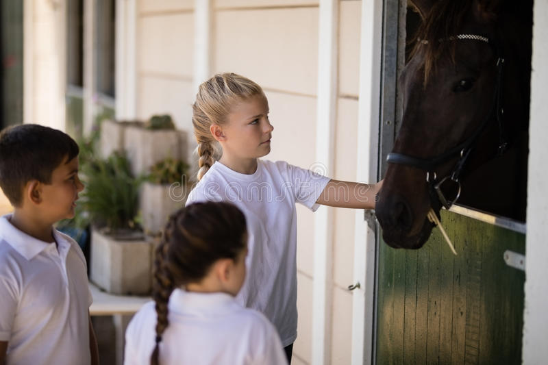 Kids looking at the brown horse in the stable royalty free stock photos