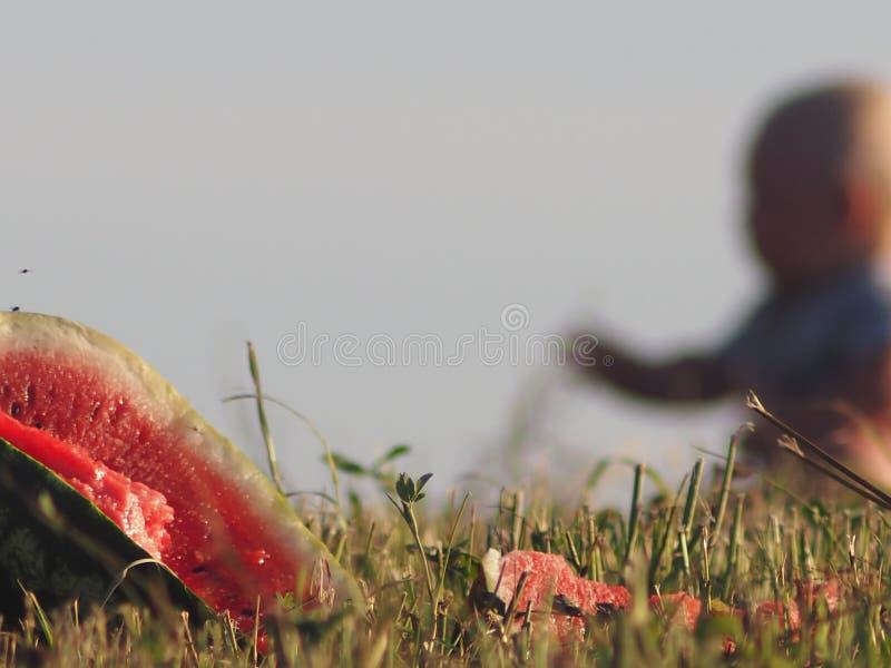 Kids nature baby pranks berries ripe grain of knowledge royalty free stock photos