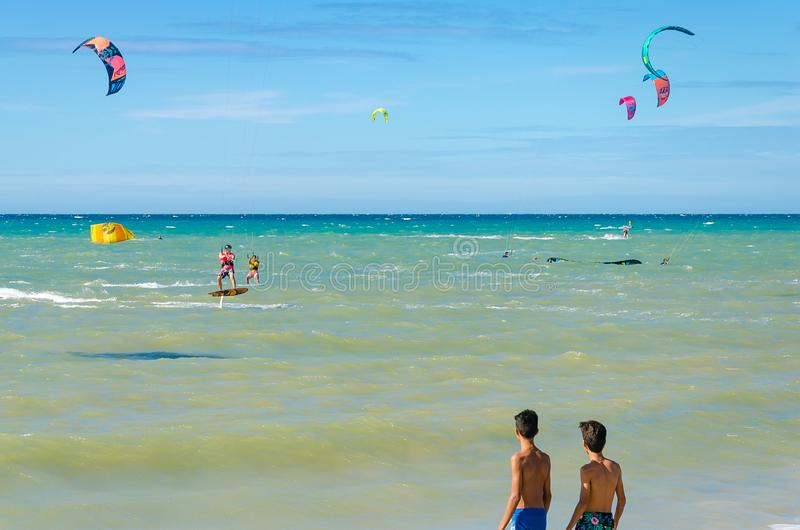 Kids observing kite surfer equipment on the sea stock images