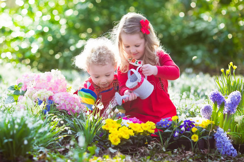Kids planting flowers in blooming garden stock photography