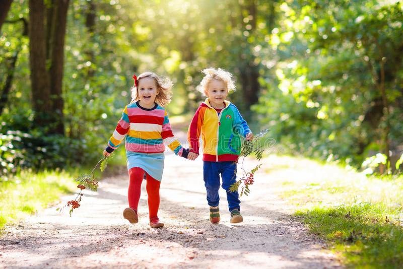 Kids play in autumn park. Children hiking in forest and mountains. Kids play outdoor in summer. Little boy and girl on hike trail in national park. Outdoor fun stock photo