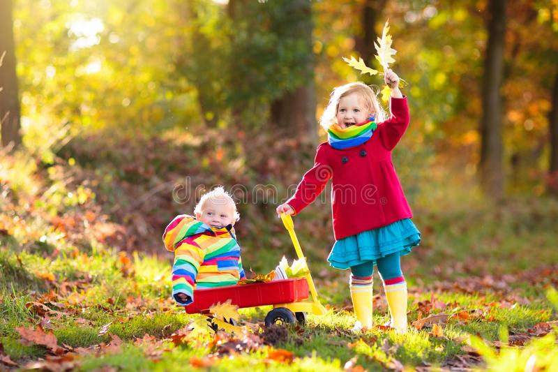 Kids play in autumn park. Children outdoor in fall. Kids play in autumn park. Child picking yellow maple leaves in sunny forest. Little girl with wheelbarrow stock photography