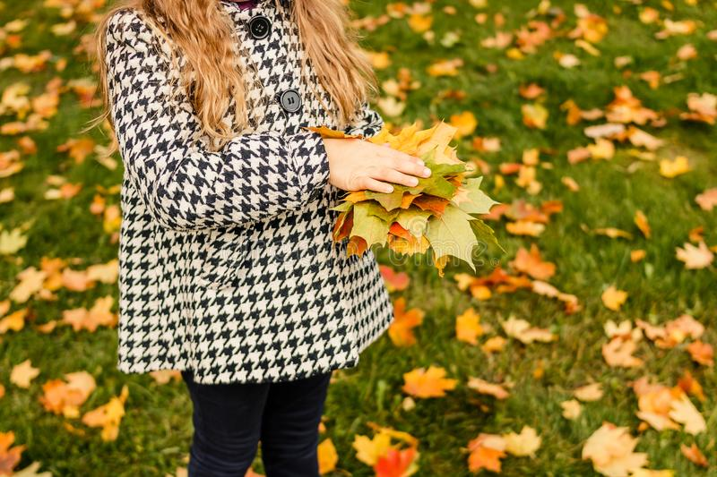 Kids play in autumn park. Children throwing yellow and red leaves. Little girl with maple leaf. Fall foliage. Family stock images