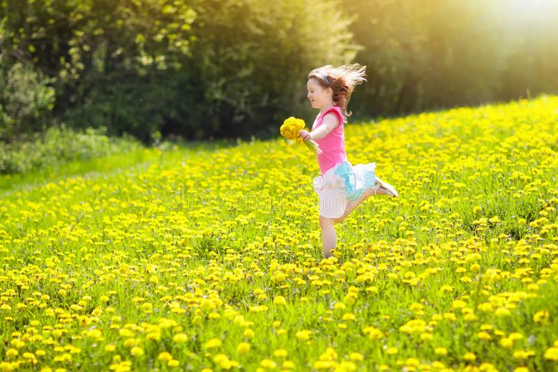 Kids play. Child in dandelion field. Summer flower. Kids play in yellow dandelion field. Child picking summer flowers. Little girl running in spring dandelions royalty free stock photography