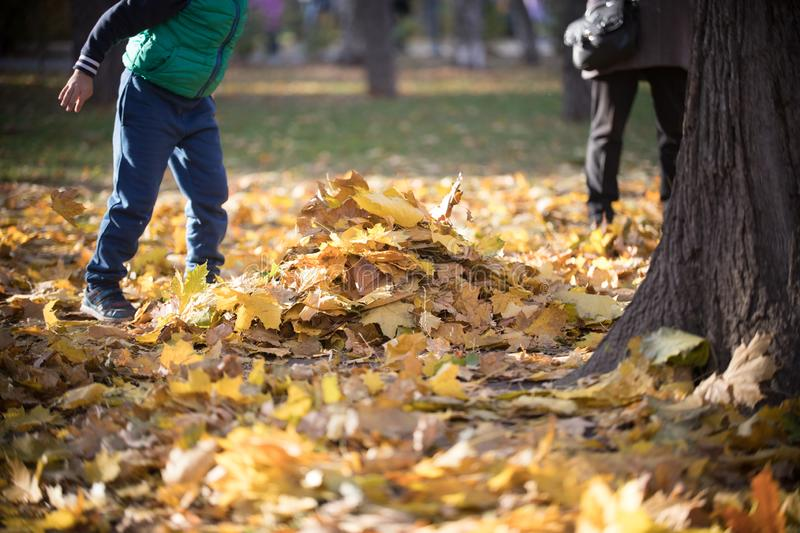Kids playing in the autumn park. Heap of yellow leaves royalty free stock photography
