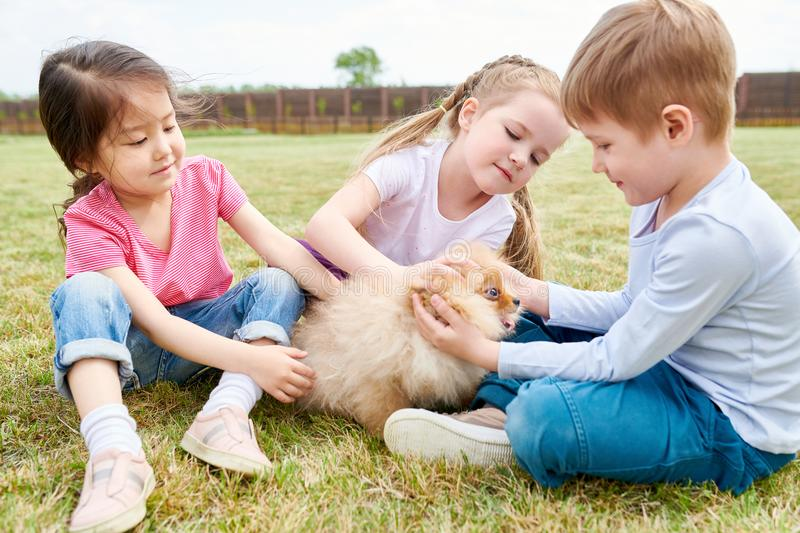 Kids Playing with Cute Puppy royalty free stock image