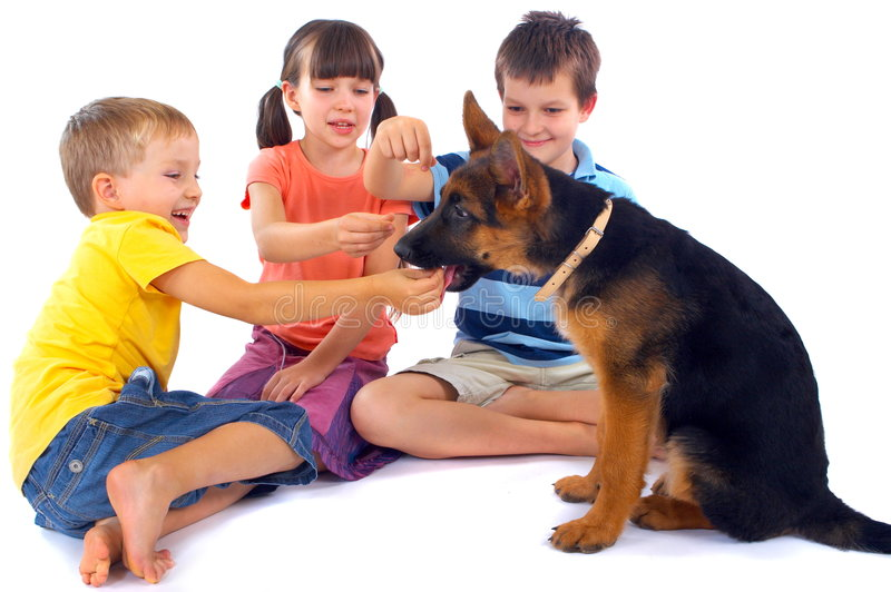 Kids playing with dog. Three kids sit on the floor, laughing and smiling as they play with a cute german shepard puppy
