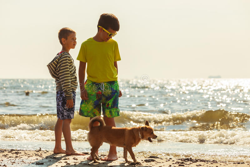 Kids playing with his dog. royalty free stock photography