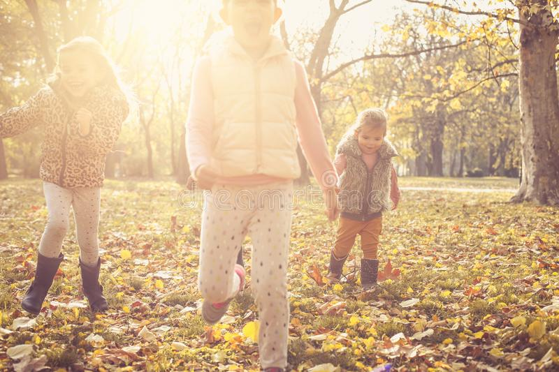 Kids playing on meadow. stock images