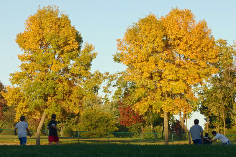 Download Kids Playing in the Park stock image. Image of leaves - 1356973
