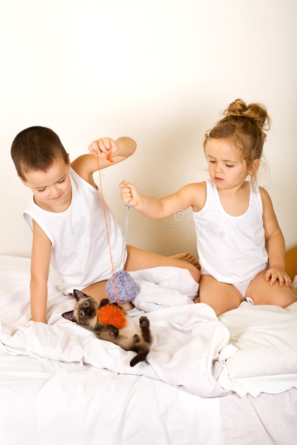Kids playing with their kitten on the bed stock photography
