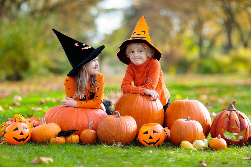 Kids with pumpkins in Halloween costumes. Children in black and orange witch costume and hat play with pumpkin and spider in autumn park on Halloween. Kids trick stock image