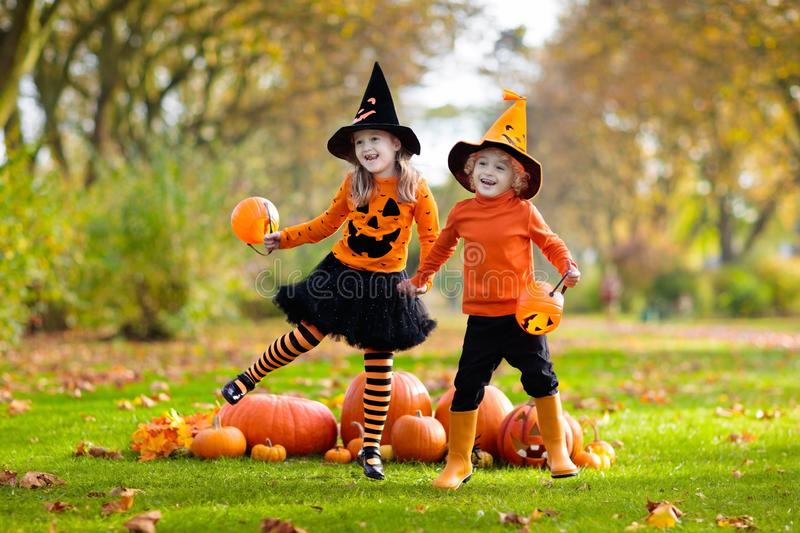 Kids with pumpkins in Halloween costumes. Children in black and orange witch costume and hat play with pumpkin and spider in autumn park on Halloween. Kids trick royalty free stock photos