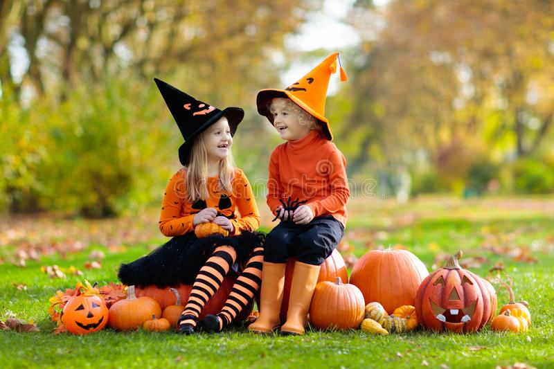 Kids with pumpkins in Halloween costumes. Children in black and orange witch costume and hat play with pumpkin and spider in autumn park on Halloween. Kids trick royalty free stock image