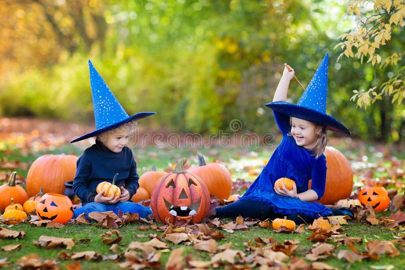 Kids with pumpkins in Halloween costumes. Children in blue witch costume and hat play with pumpkin and spider in autumn park on Halloween. Kids trick or treat stock photography