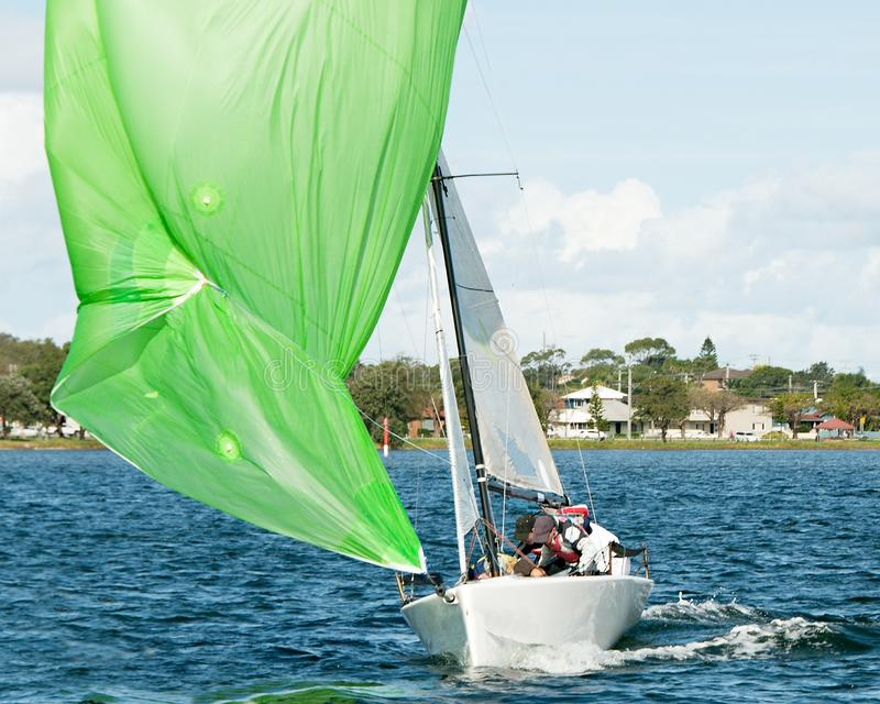 Kids sailing small sailboat head-on closeup with a fouled green spinnaker royalty free stock image