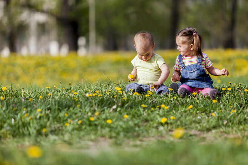Kids in the spring field royalty free stock images