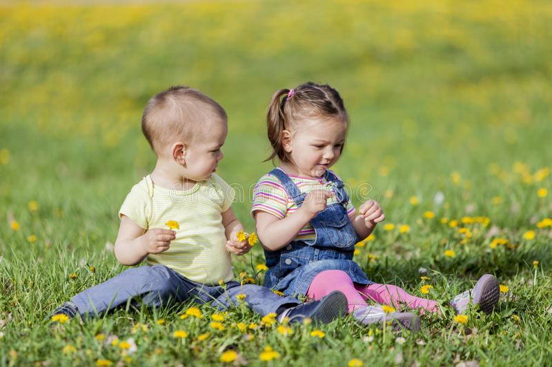 Kids in the spring field royalty free stock image