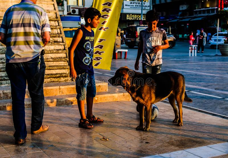 Kids With Street Dogs In Turkish Summer Town - Turkey. Kids with street dogs in a small Turkish seaside and summer vacation town located in Marmara region of the stock photography