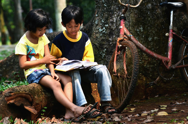 Kids Studying. Asian kids studying in the park after school stock photo