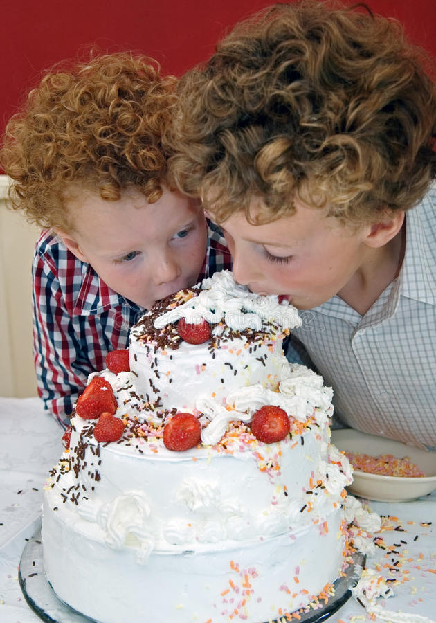 Kids tasting Cake. Two boys taking a bite out of a huge birthday cake with whipped cream and strawberries(8 and 3 years old royalty free stock photography