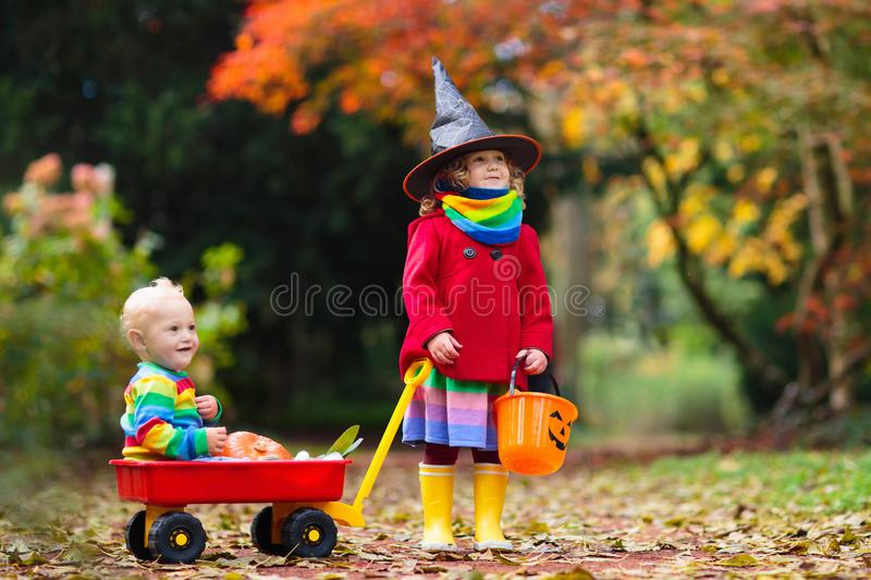 Kids trick or treat on Halloween night. Little girl with pumpkin face candy bucket. Child trick or treating. Kid in scary witch costume with sweets bag royalty free stock images