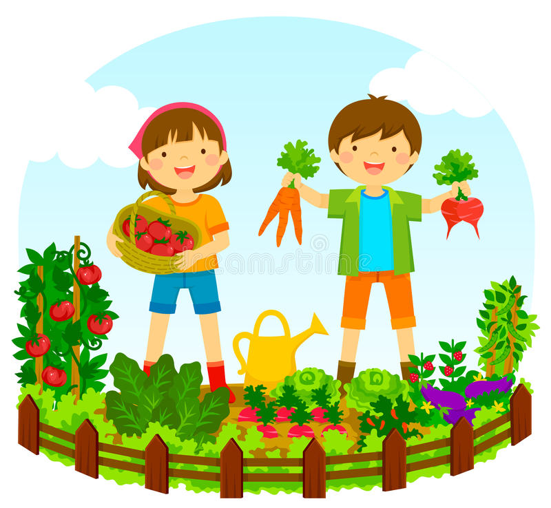 Kids in a vegetable garden stock illustration
