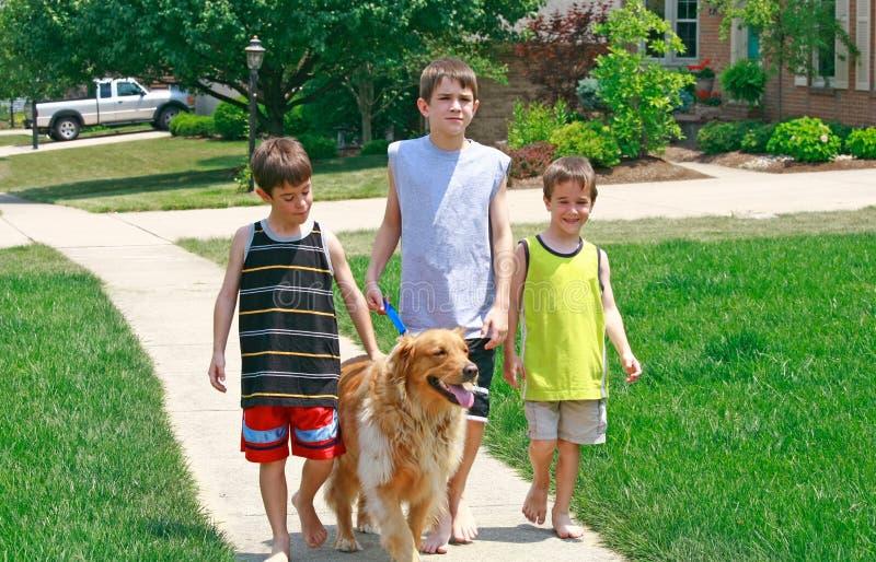 Kids Walking the Dog stock photo