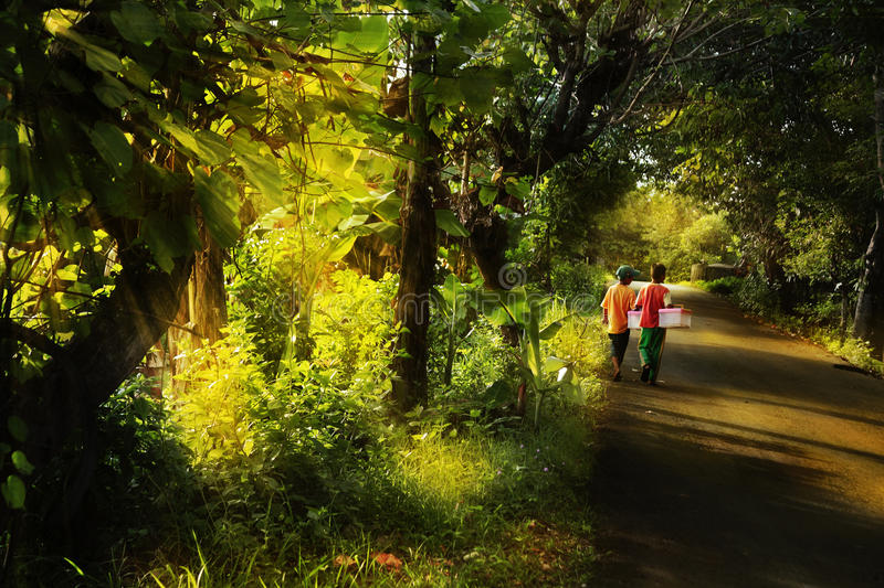 Kids walking in mystical morning. With ray of light royalty free stock image