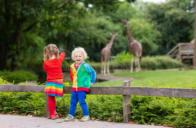 Kids watching giraffe at the zoo royalty free stock images