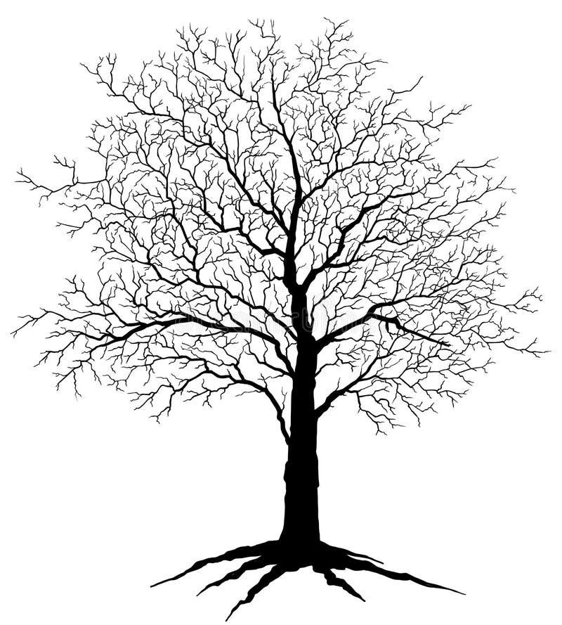 kiedy projekt zawiera tekstury sylwetki używa drzew royalty ilustracja