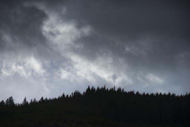 Kieferkanten-Landschaftsbild gegen drastischen stürmischen Winterhimmel in Snowdonia stockfotografie
