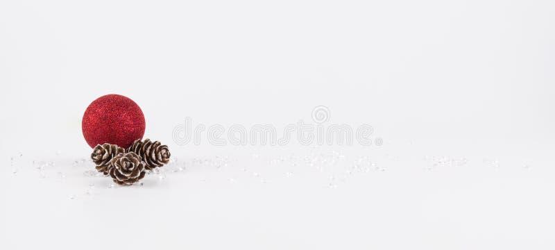 Kiefern-Kegel, drei kleine trockene Kiefernkegel, lokalisiert auf weißem Hintergrund stockfotos