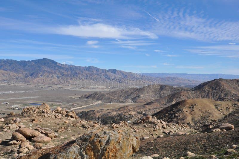 Kiefern zum Palmen-szenischen Seitenweg in Kalifornien lizenzfreie stockbilder