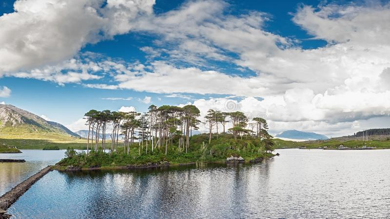 Kieferninsel in Nationalpark Connemara, sonniger warmer Tag, Grafschaft Galway, Irland Bew?lkter drastischer Himmel Vertikales Bi lizenzfreie stockbilder