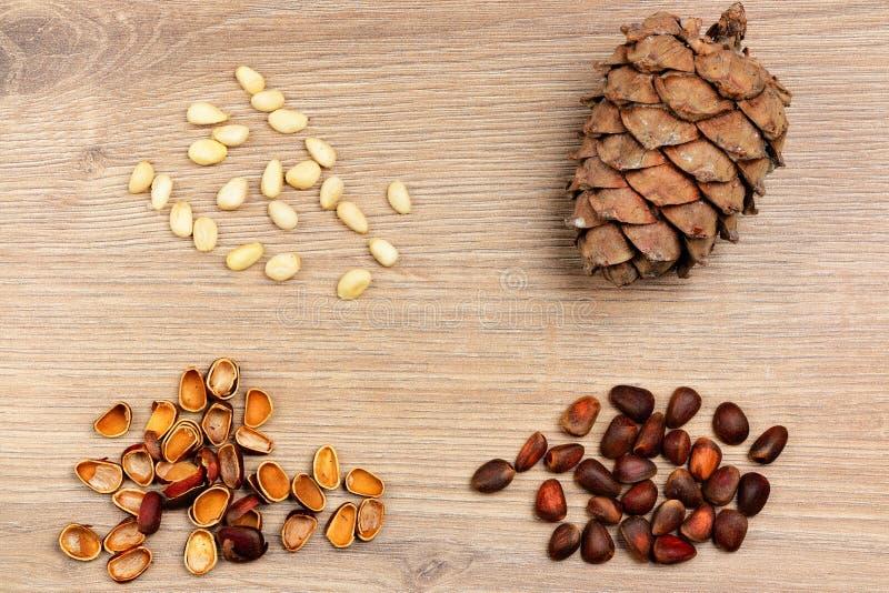 Kiefernkegel, -nüsse und -oberteile stockbild