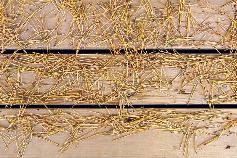 Kiefernkegel und trockene Nadeln, die auf den Brettern liegen lizenzfreie stockfotografie
