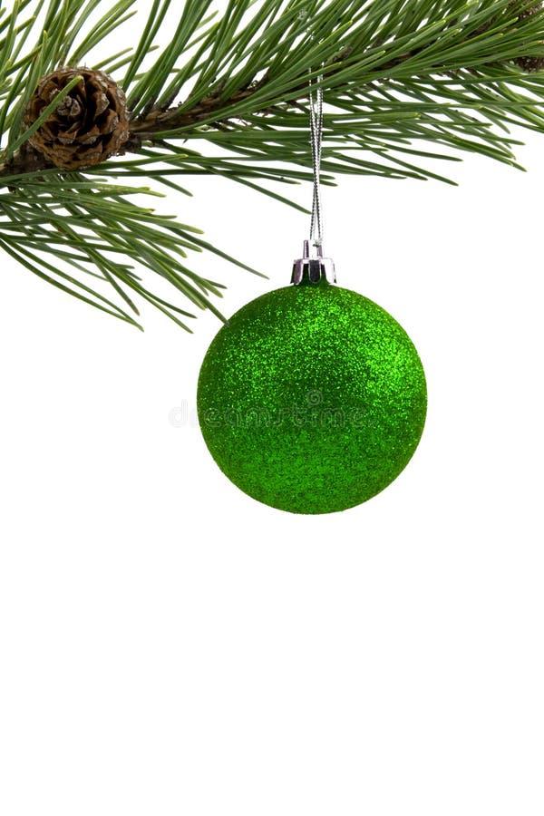 Kieferzweig mit grünem Flitter stockfoto