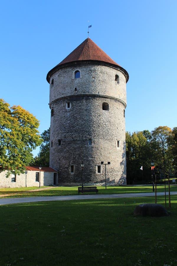 Kiek in de kök,Tallinn stock image
