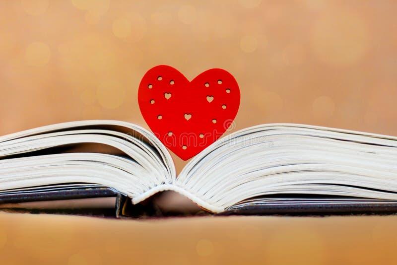 Kierowa i wyjawiona książka, biblia Lubię czytać książki Bible_ zdjęcia stock