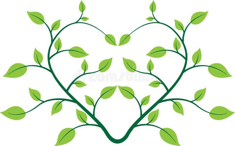 Kierowa roślina ilustracja wektor