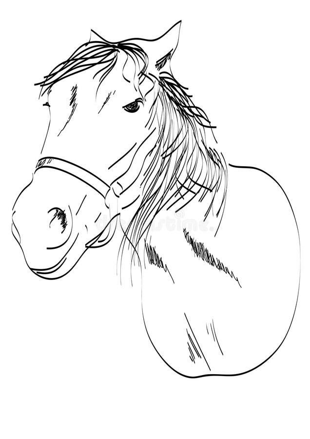 kierowniczy koń royalty ilustracja