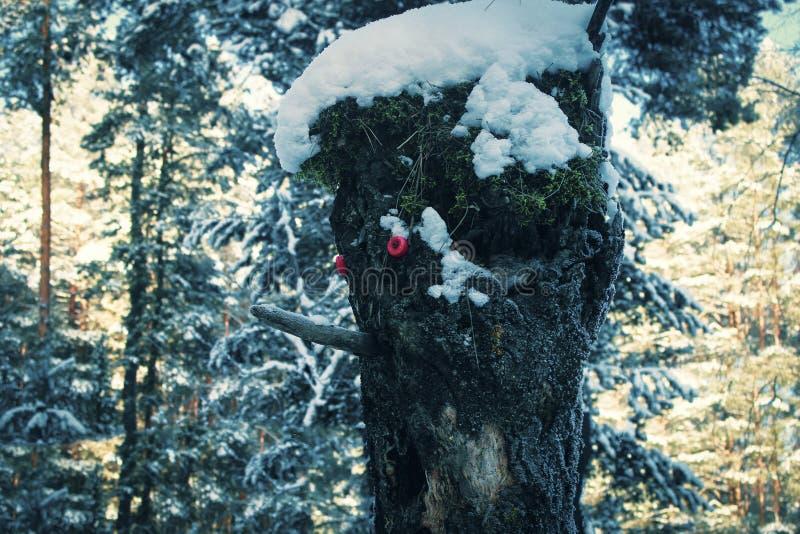 Kierowniczy lasowy drewniany czarodziejski potwór zdjęcia stock